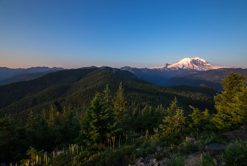 A rainier view (1 of 1)