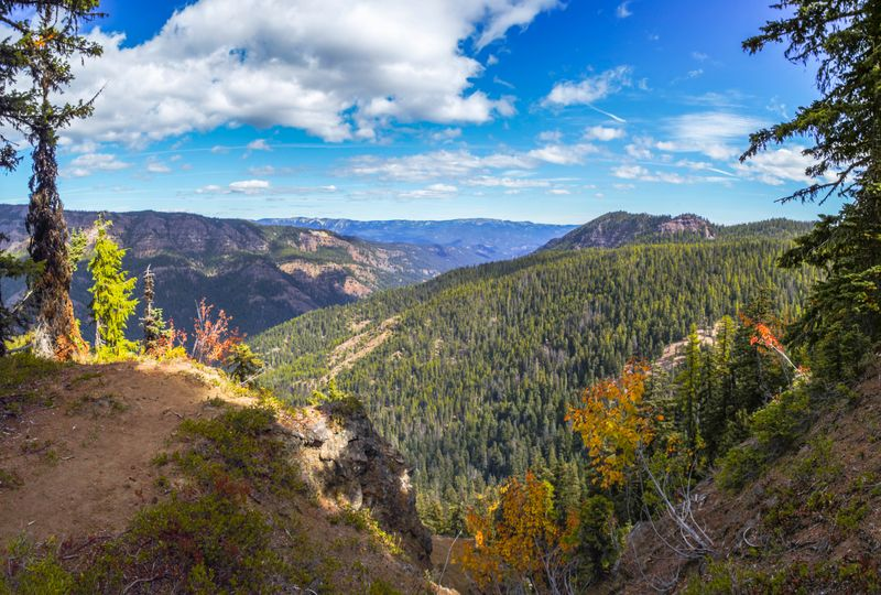 East View from Trail-