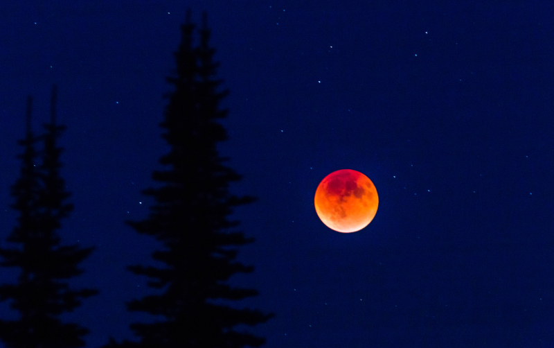 Blood Moon 1-3064