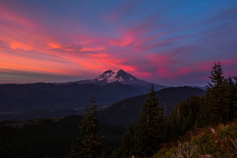 Pink Skies over Rainier