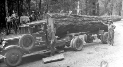 Logging truck at deception pass state park