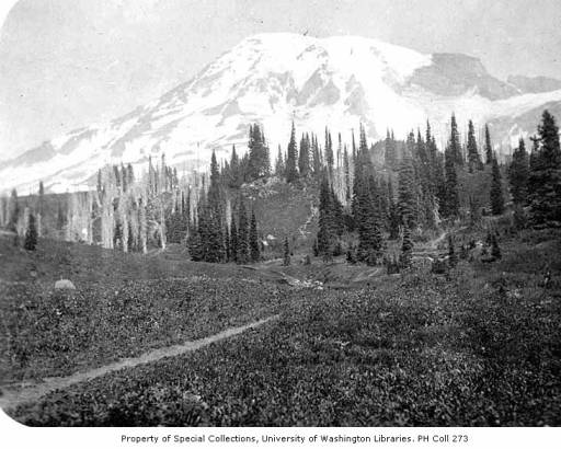 Mt rainier naches loop trail