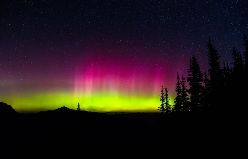 Northern lights trees 100a (1 of 1)