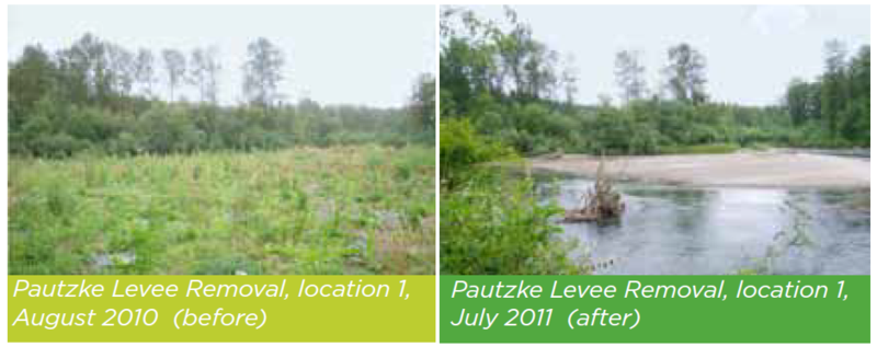 Pautzke Levee Removal