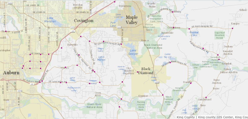 King County Traffic Monitoring Map (2)