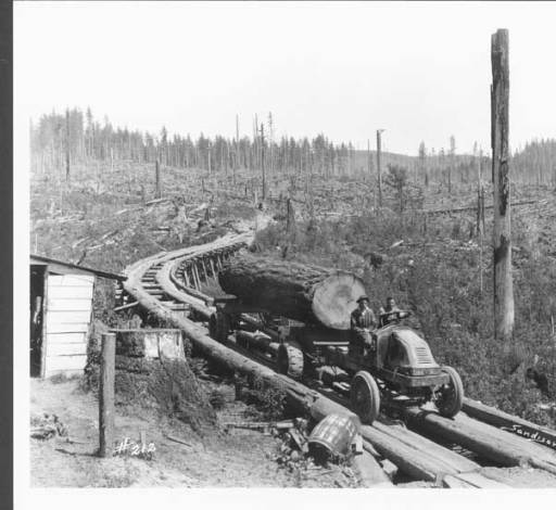 Logging truck and road