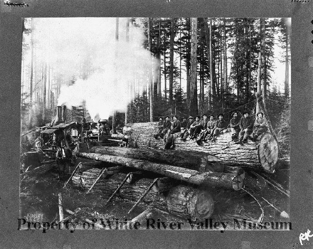 Covington logging camp 2