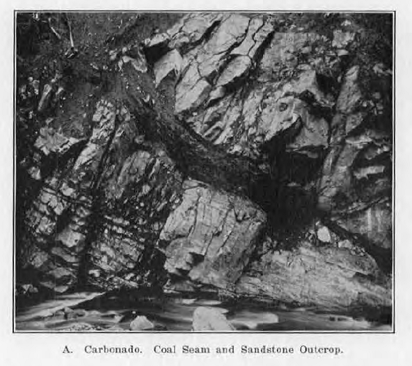 Carbonado coal seam