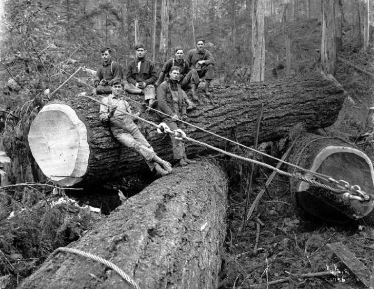 Image result for oregon pro logging