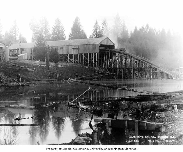 Lake tapps sawmill in operation