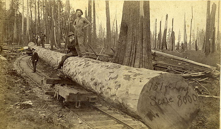 151 foot long log and rail car